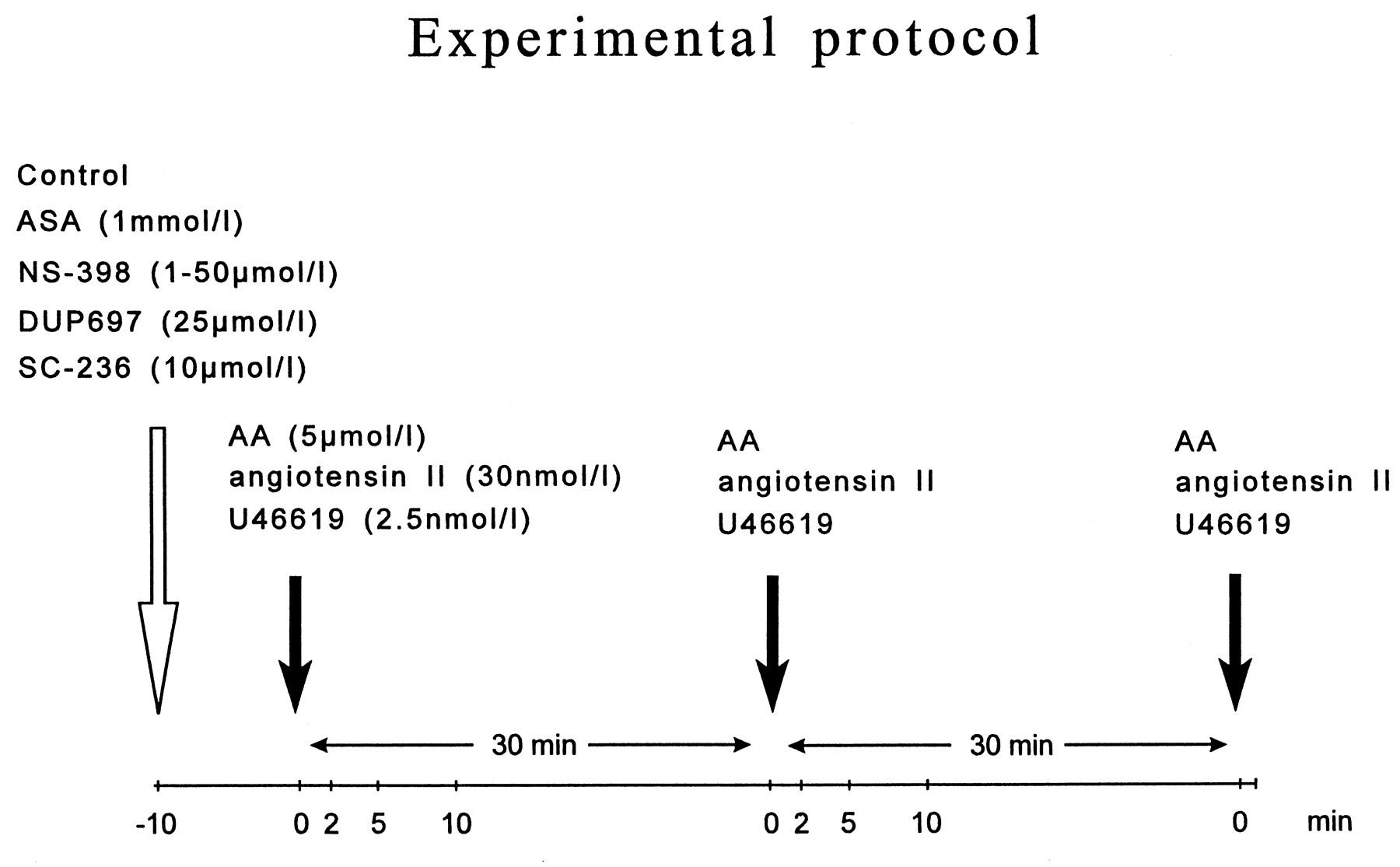 experiment 1 protocol