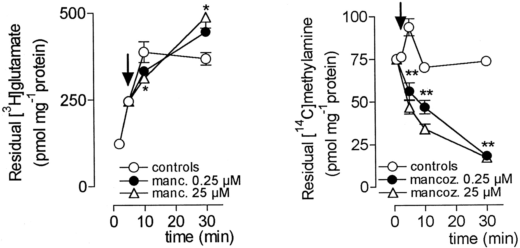 Dithiocarbamate Pesticides Affect Glutamate Transport in Brain