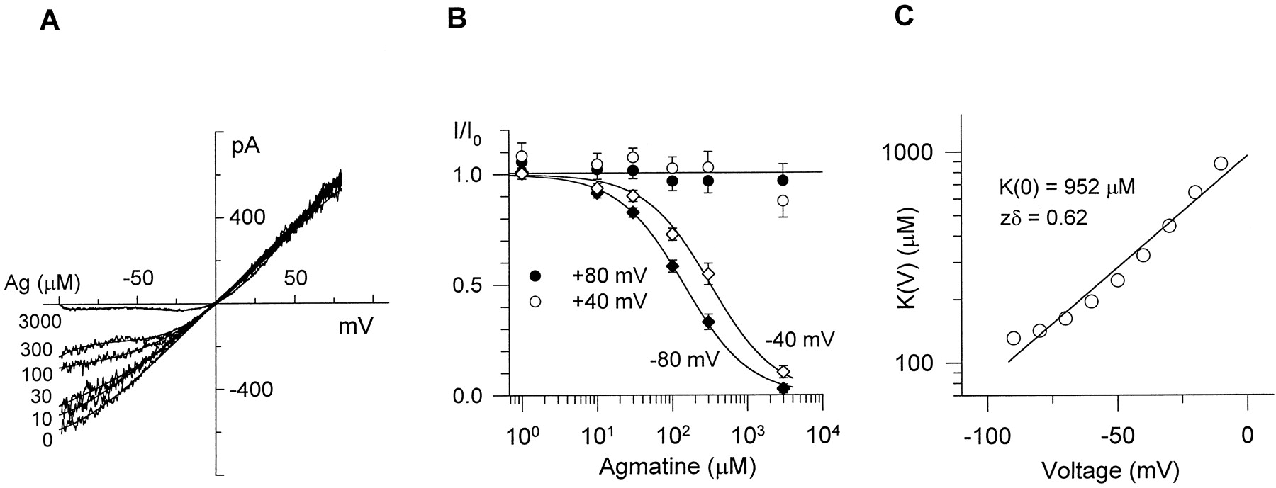 Agmatine Selectively Blocks theN-Methyl-d-Aspartate Subclass of