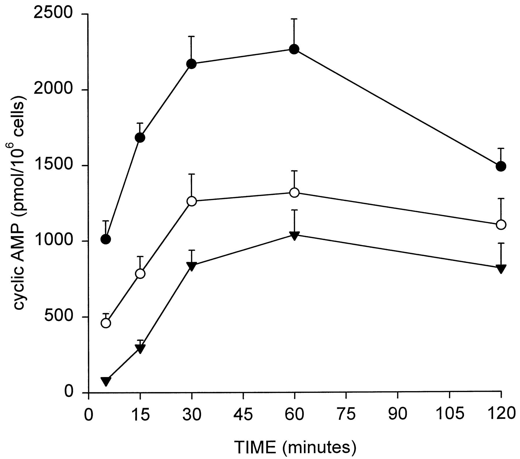 Herbalife weight loss surat image 4