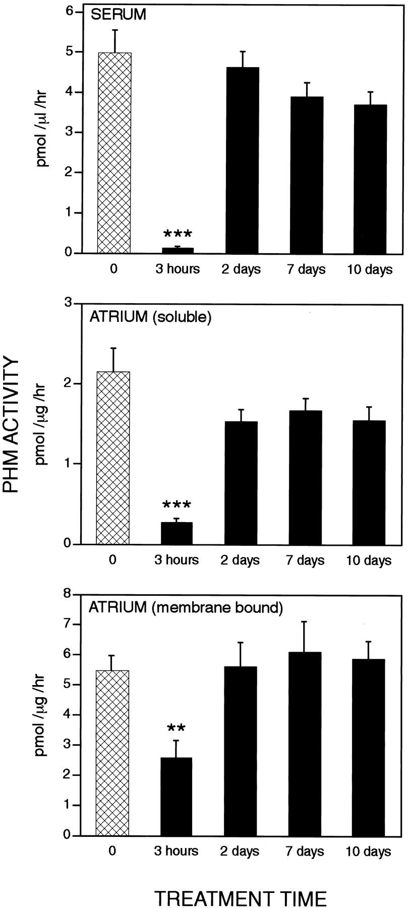 Peptidyl amidating enzyme activity