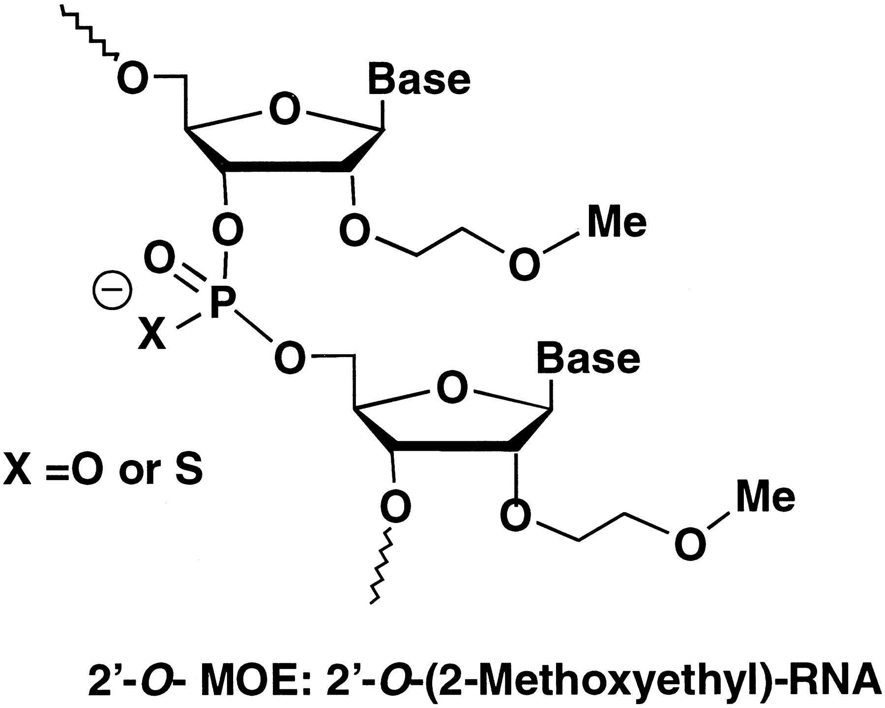 pharmacokinetic properties of 2 u2032