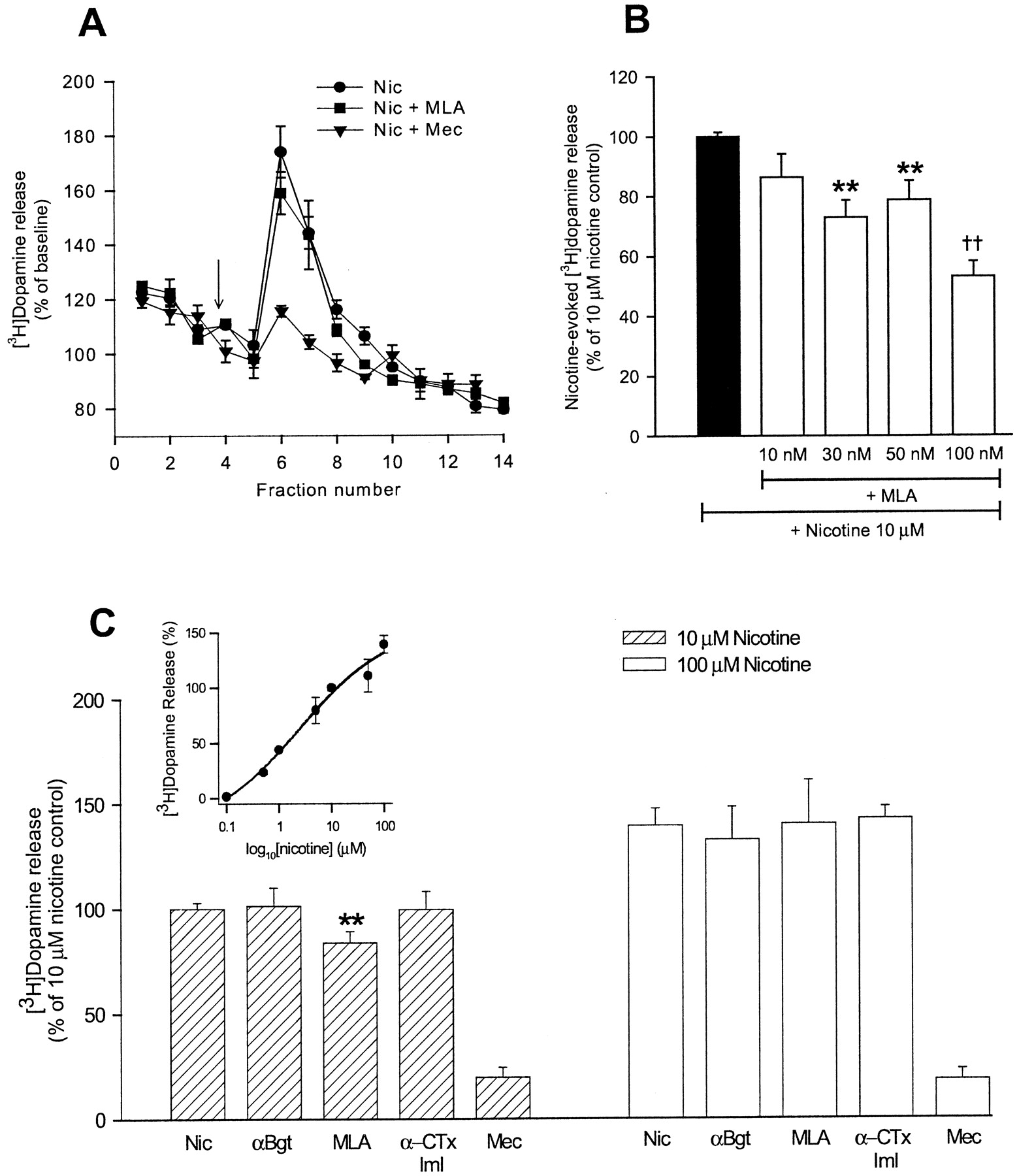 Methyllycaconitine Is A Potent Antagonist Of Conotoxin Mii