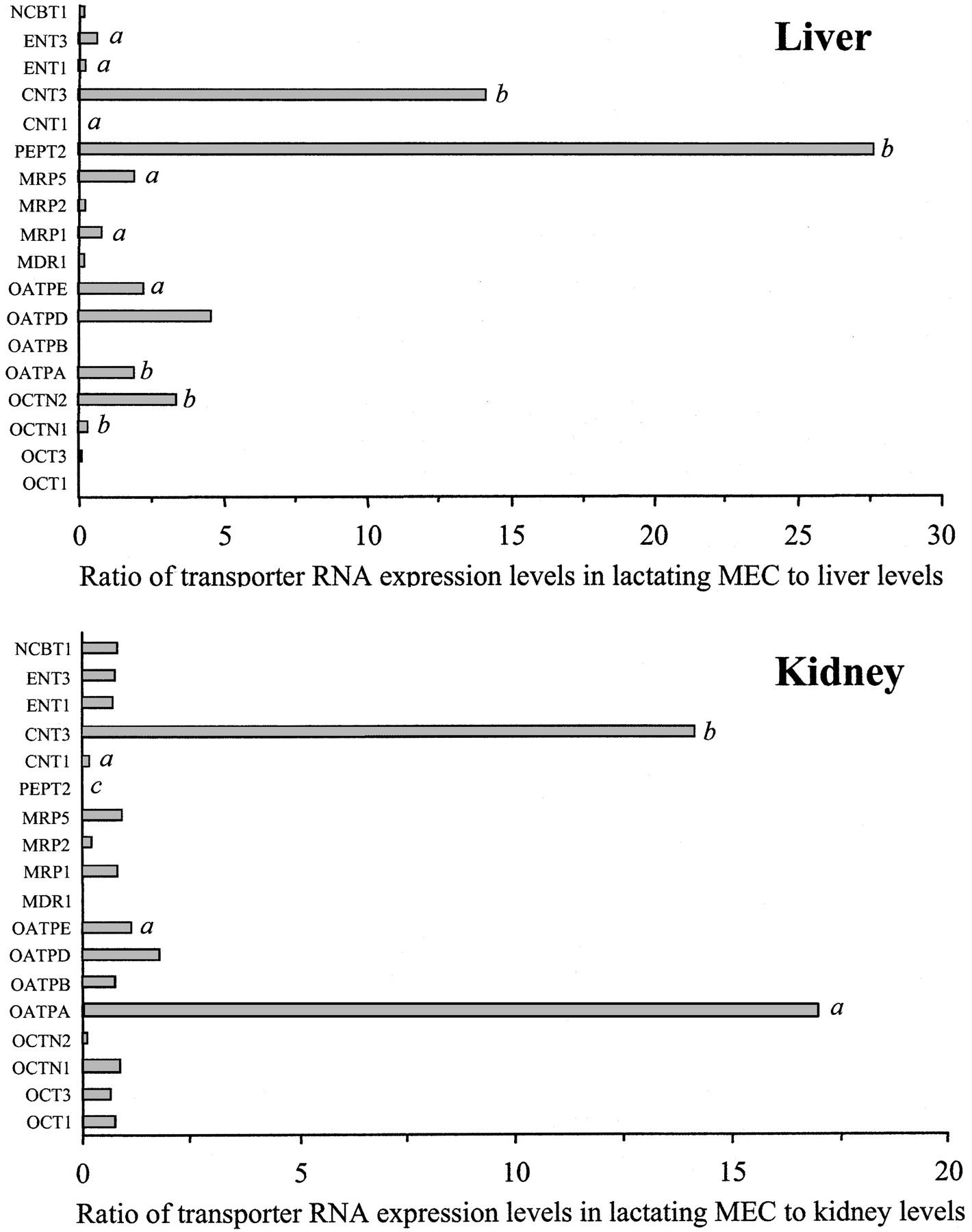 transporter gene expression in lactating and nonlactating human
