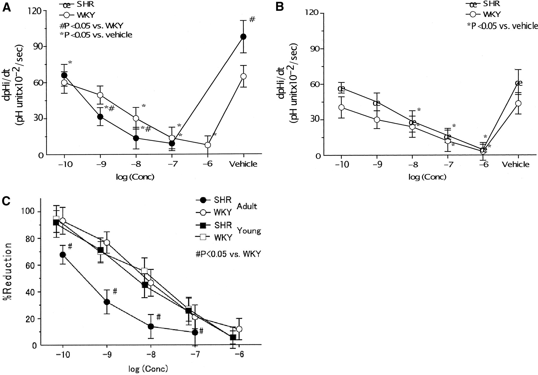 Inhibition of Rho-Kinase Reduces Renal Na-H Exchanger Activity and