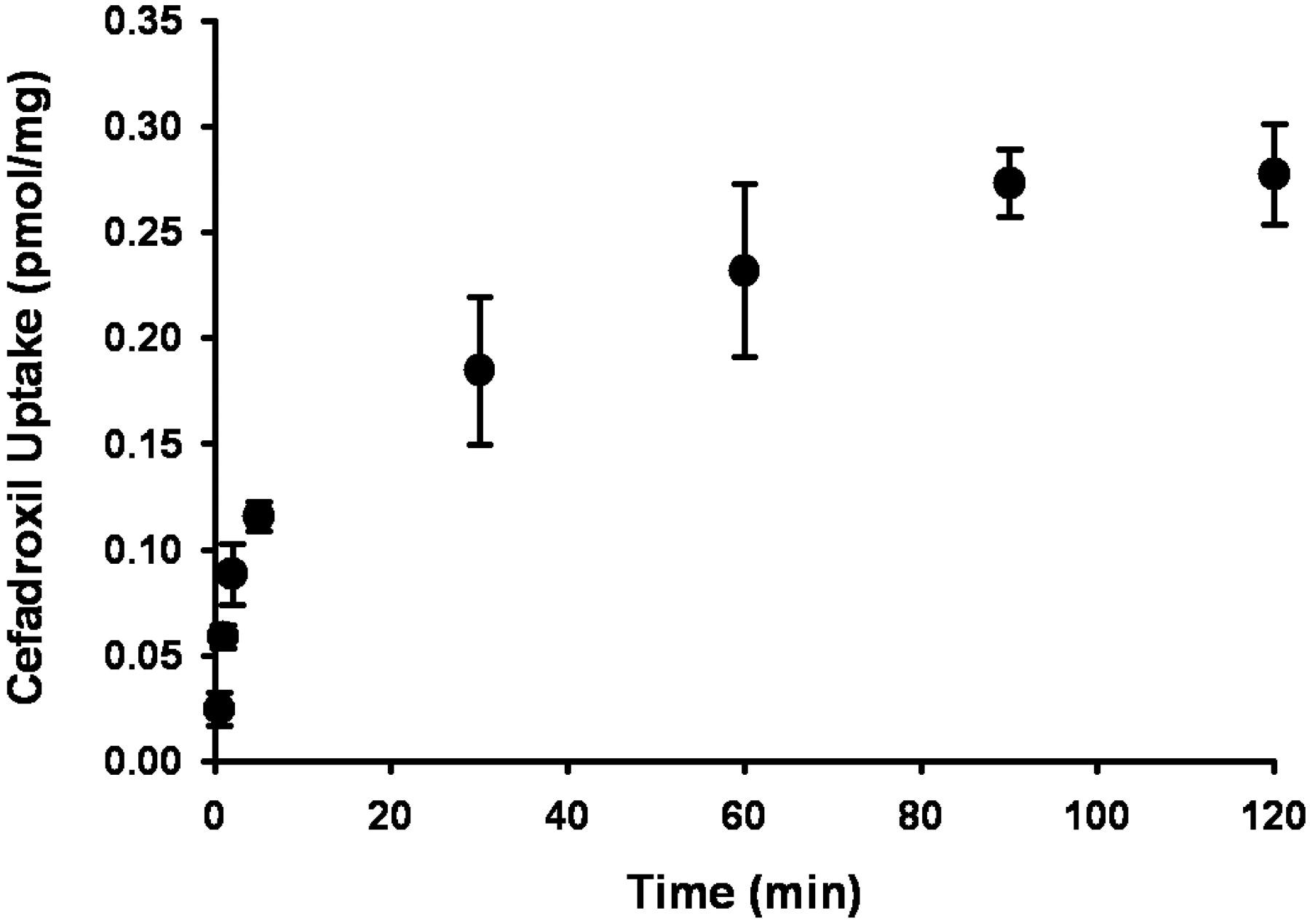 Mechanisms Of Cefadroxil Uptake In The Choroid Plexus Studies In