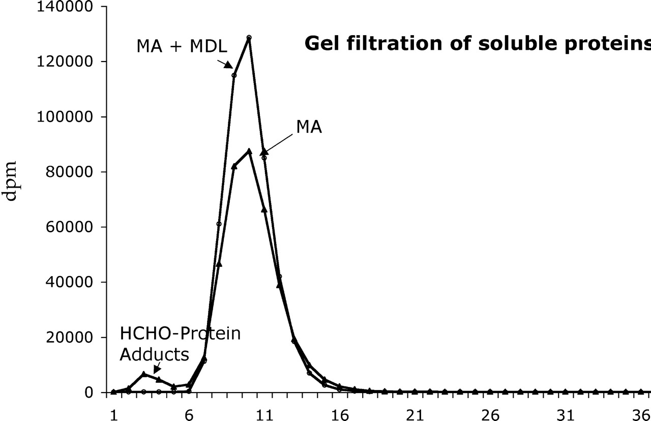 Protein Cross-Linkage Induced by Formaldehyde Derived from