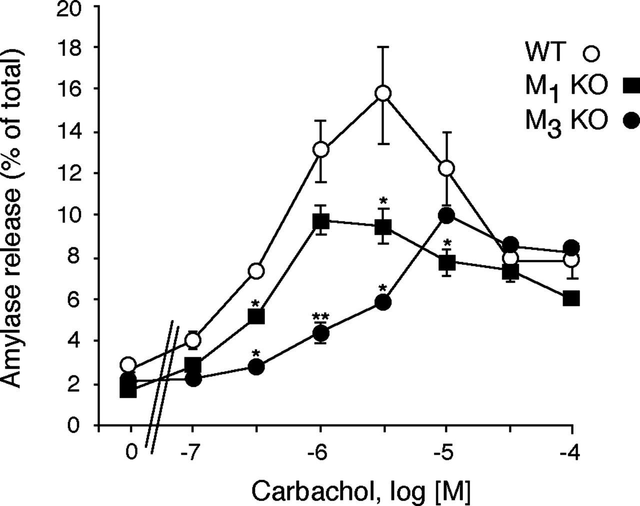 Cholinergic Stimulation Of Amylase Secretion From Pancreatic Acinar