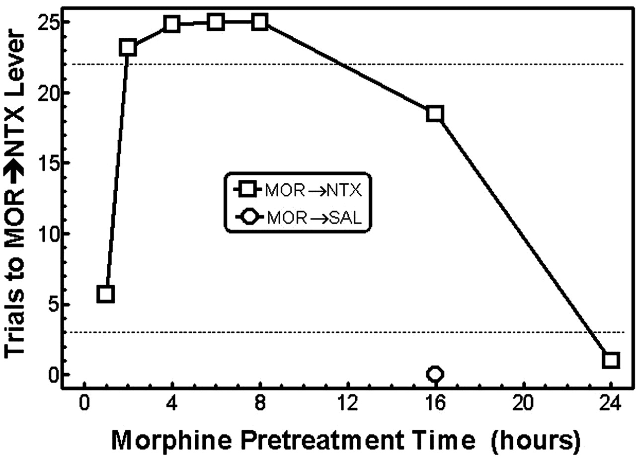 Discriminative Stimulus Effects Of Acute Morphine Followed By