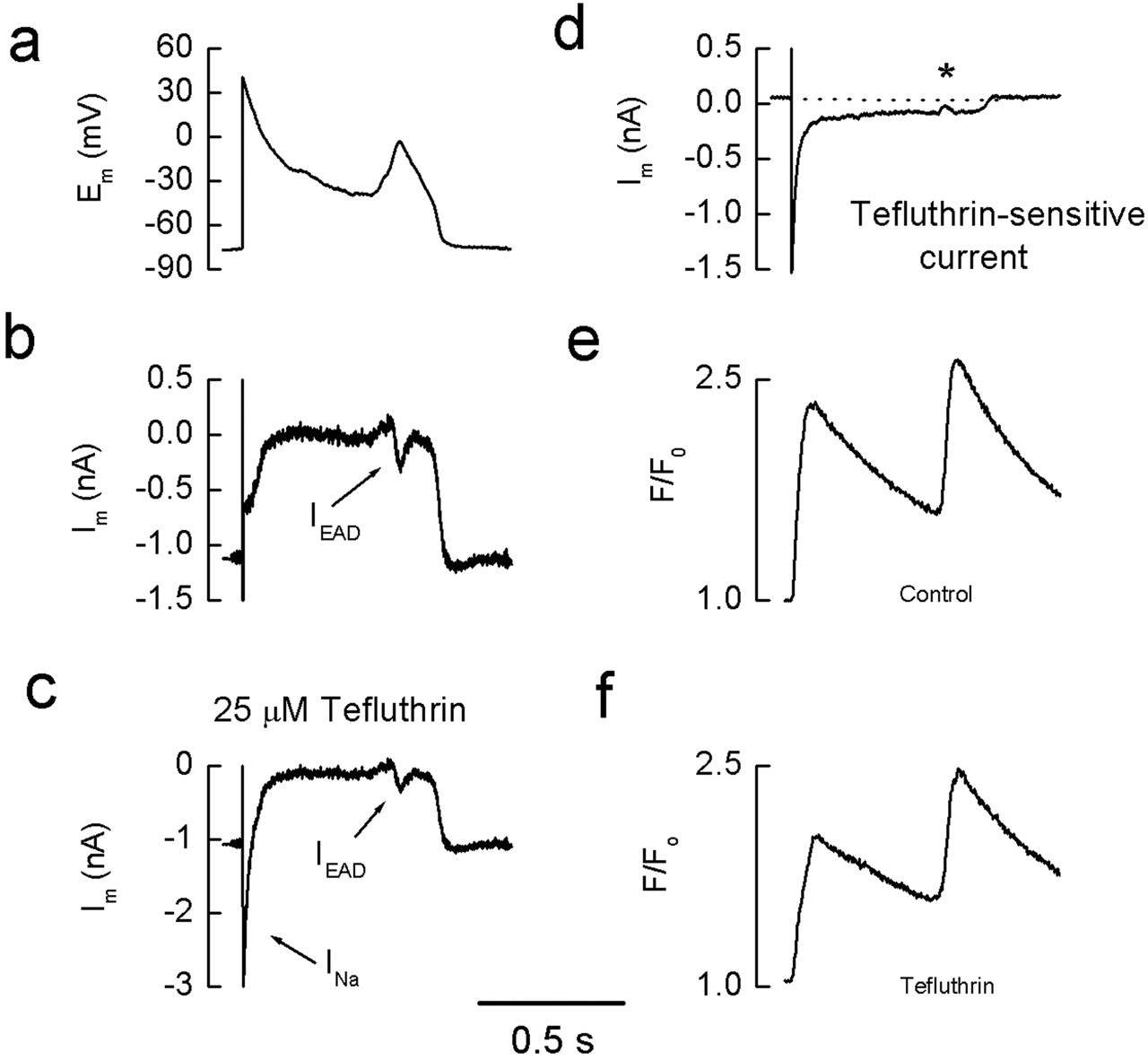 mechanisms underlying the effects of the pyrethroid