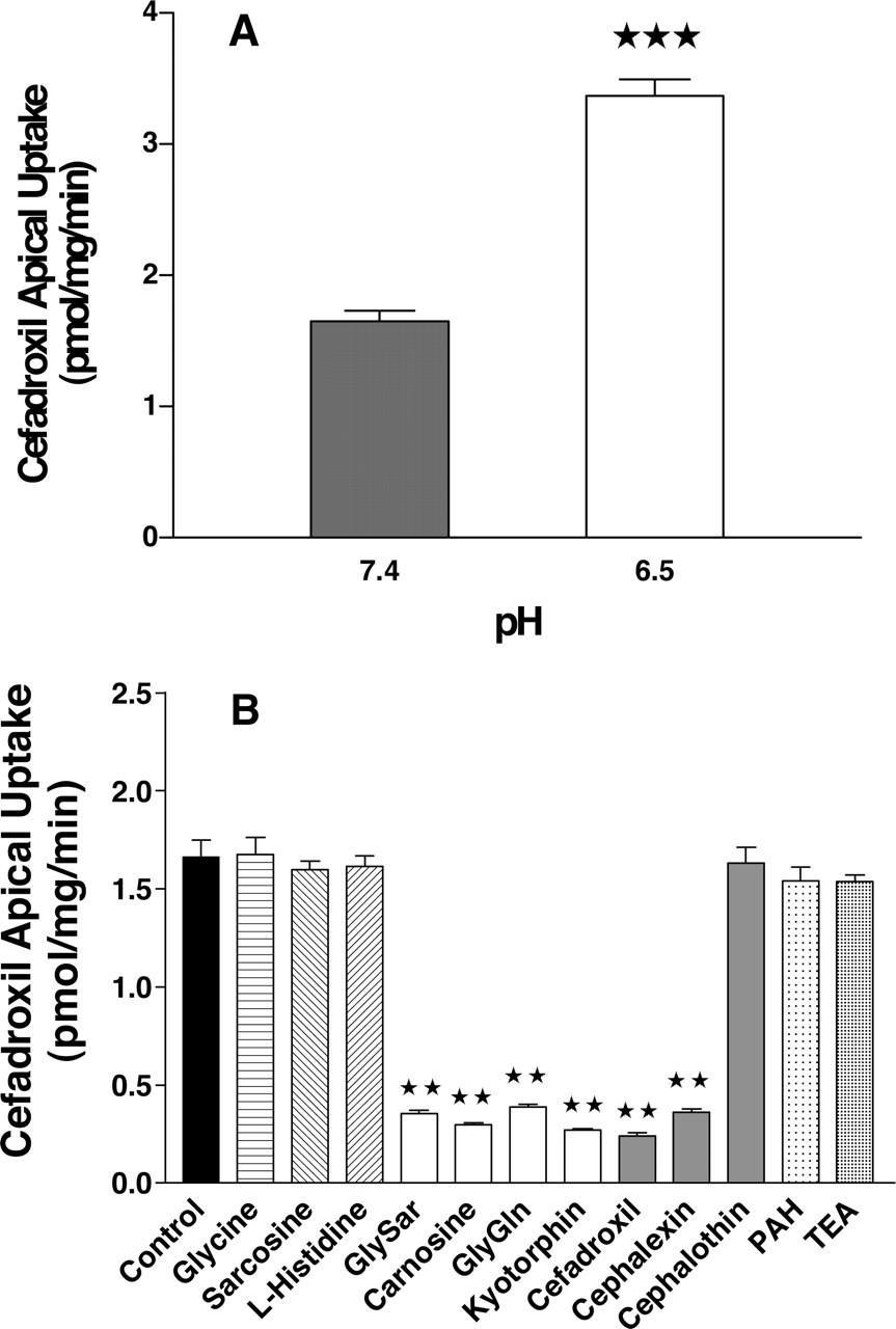 cost of hydrochlorothiazide