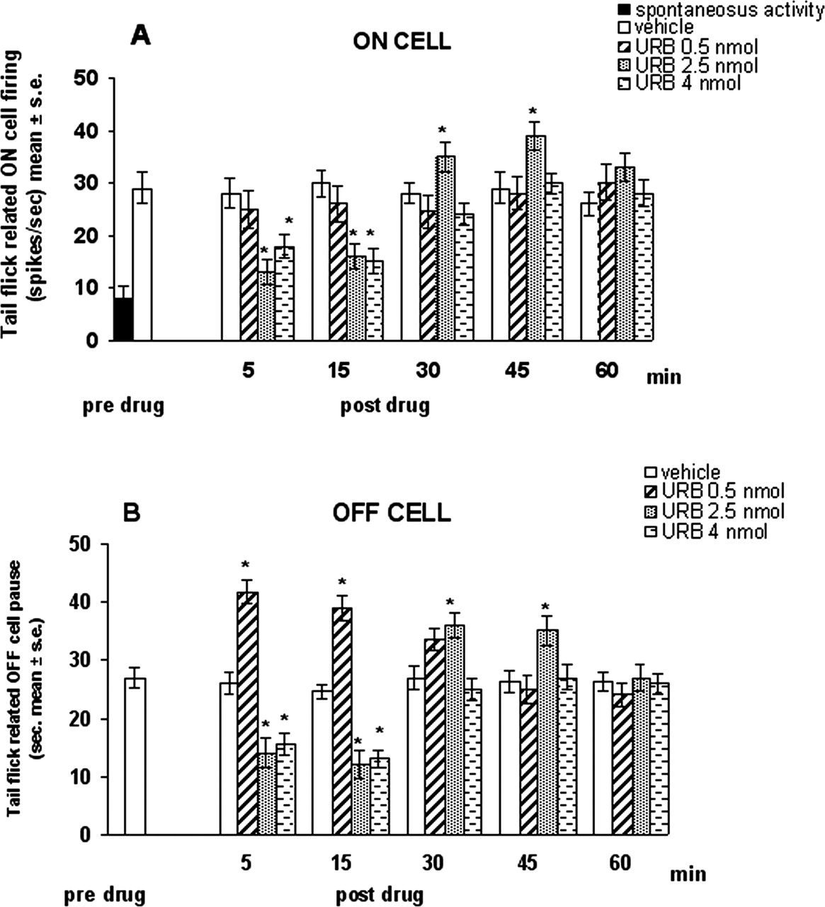 elevation of endocannabinoid levels in the ventrolateral