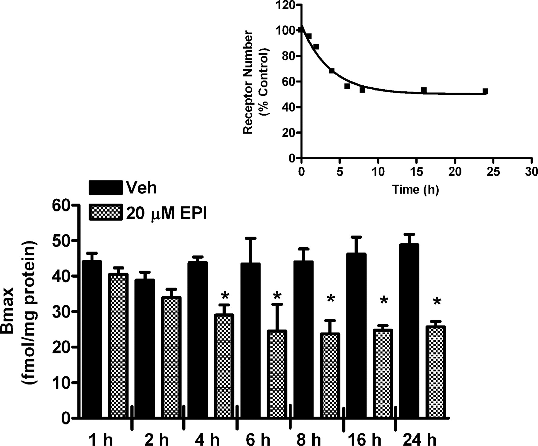 Involvement Of G Protein Coupled Receptor Kinase Grk 3 And Grk2 In Lm 317 T Related Keywords Suggestions Long Tail Download Figure