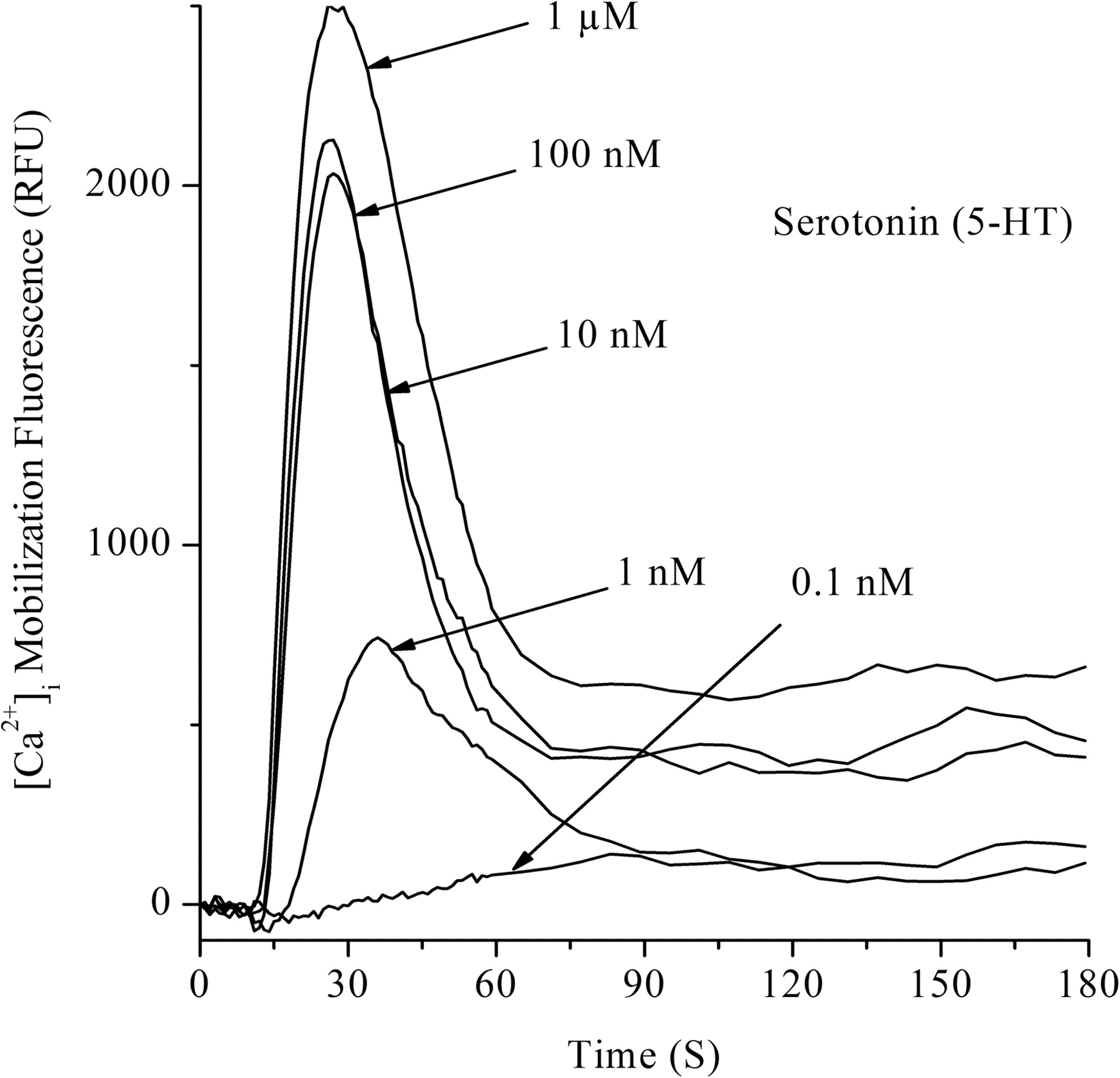 pharmacological evidence for a functional serotonin-2b receptor in, Muscles
