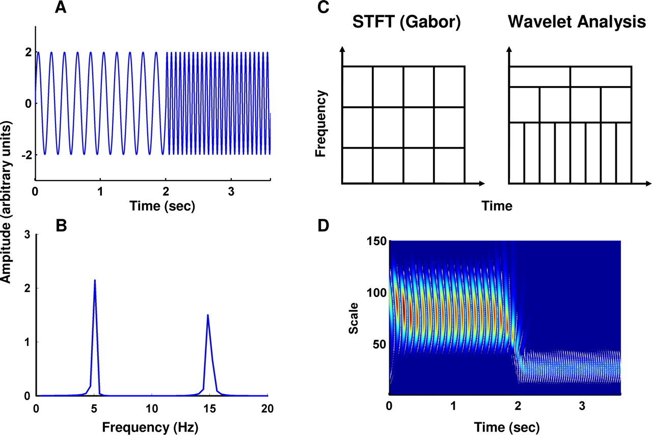 Use of Wavelet and Fast Fourier Transforms in