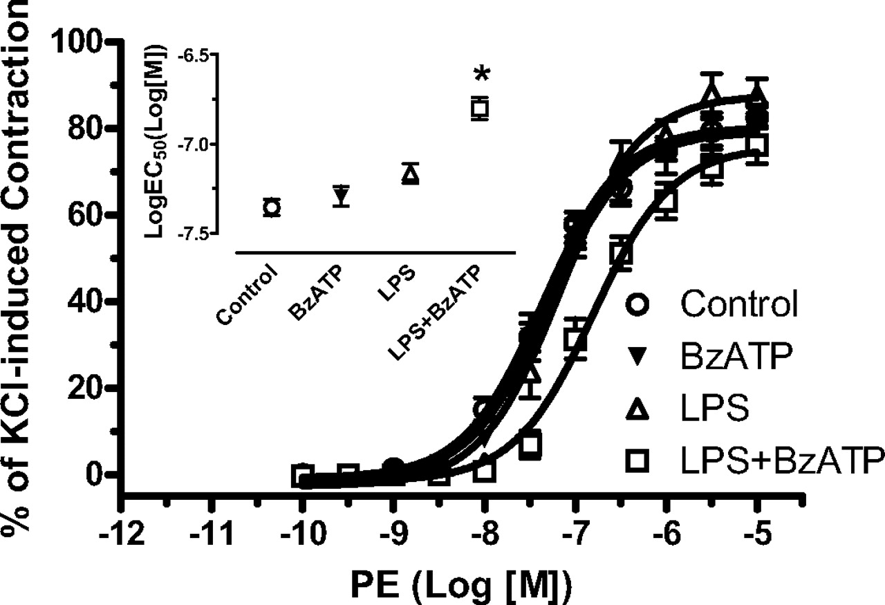 P2X7 Receptor Activation Amplifies Lipopolysaccharide