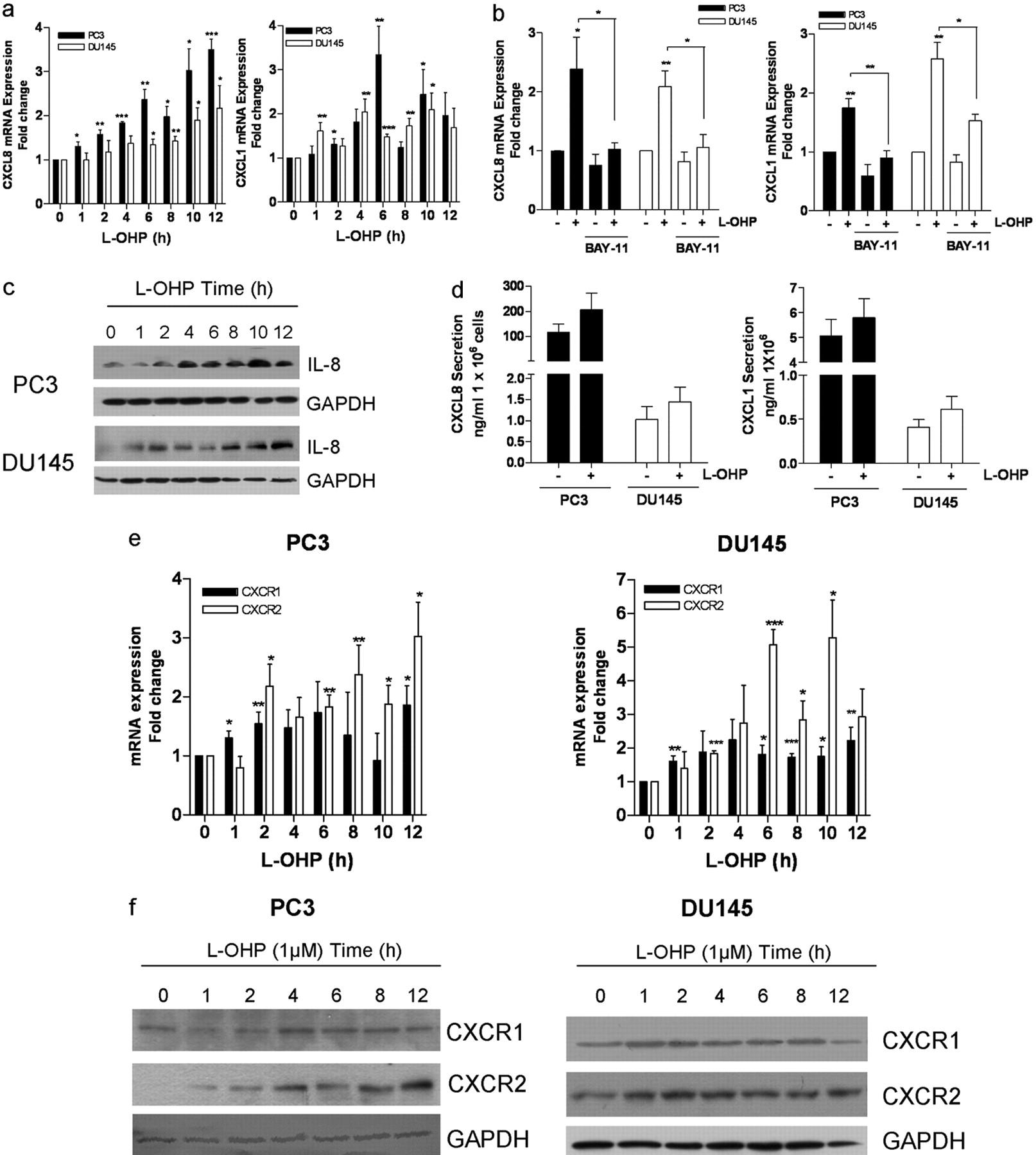 Chemotherapy-Induced CXC-Chemokine/CXC-Chemokine Receptor