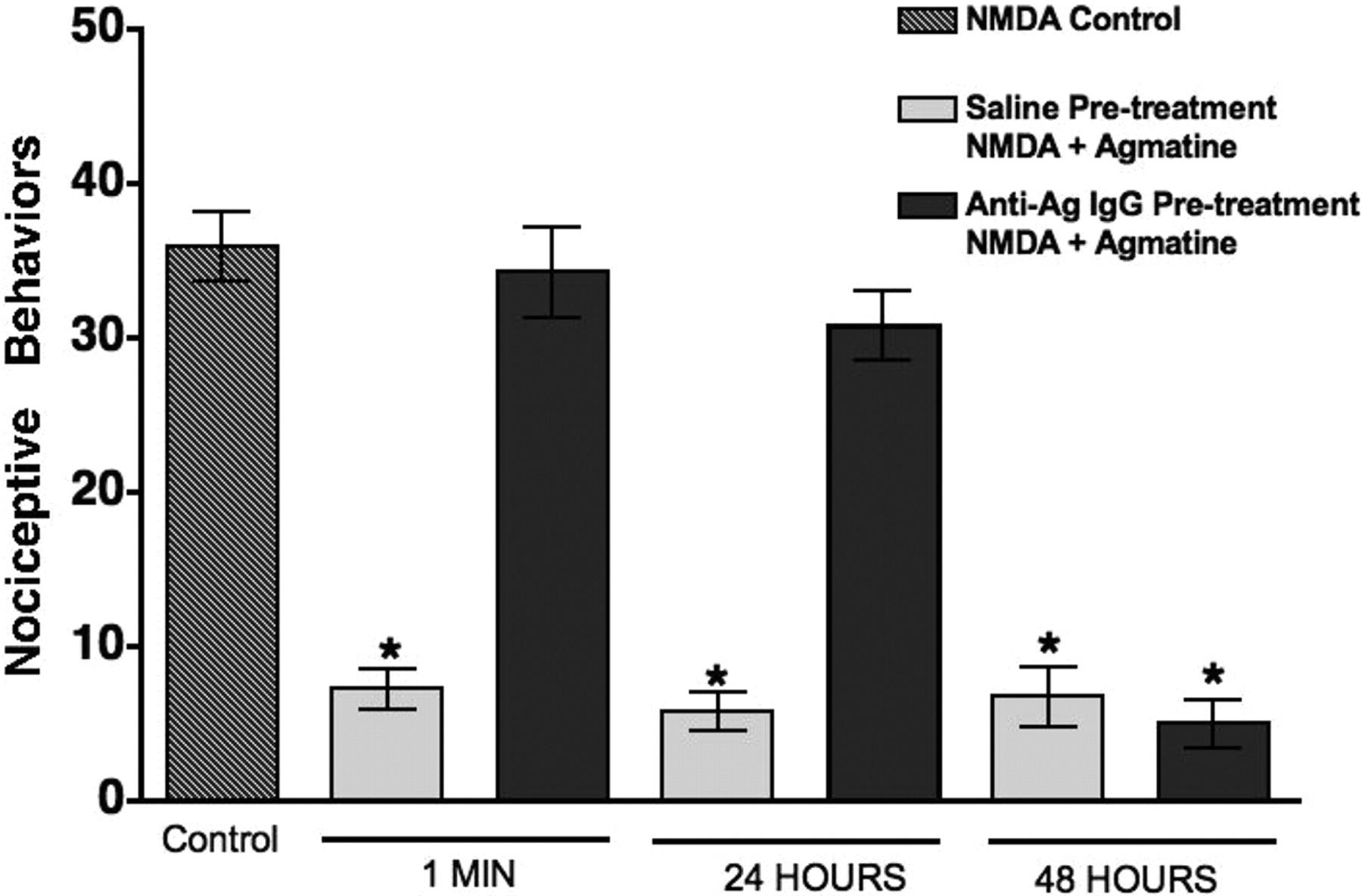 Immunoneutralization of Agmatine Sensitizes Mice to μ-Opioid