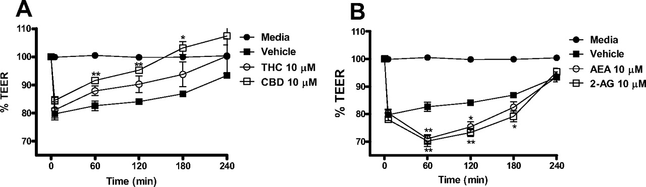 Pharmacological Effects of Cannabinoids on the Caco-2 Cell Culture