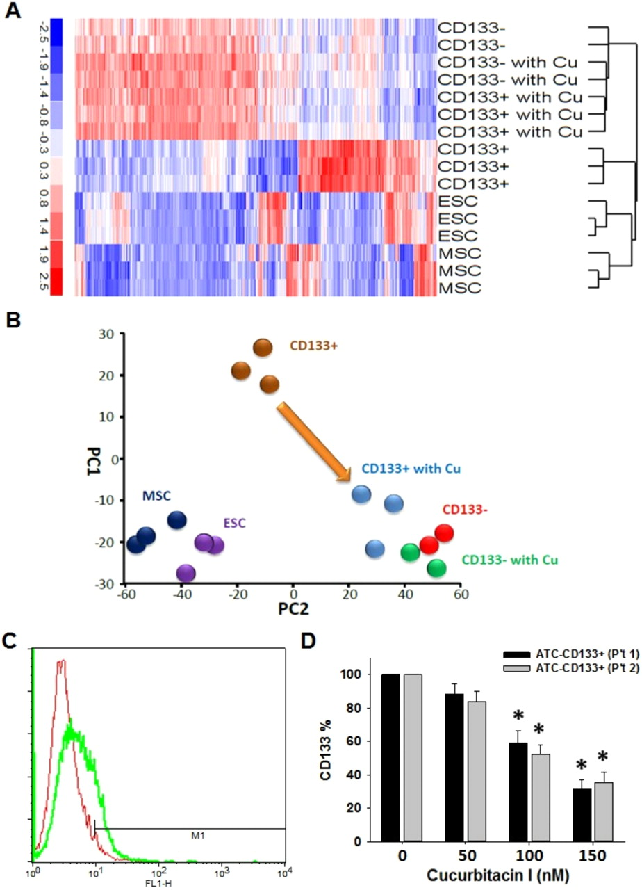 Targeting Signal Transducer and Activator of Transcription 3 Pathway