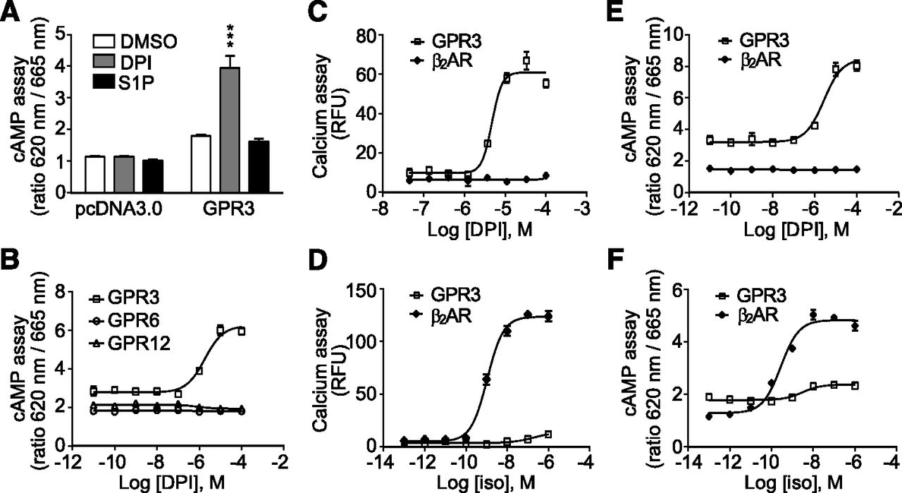 Identification of a Novel Small-Molecule Agonist for Human