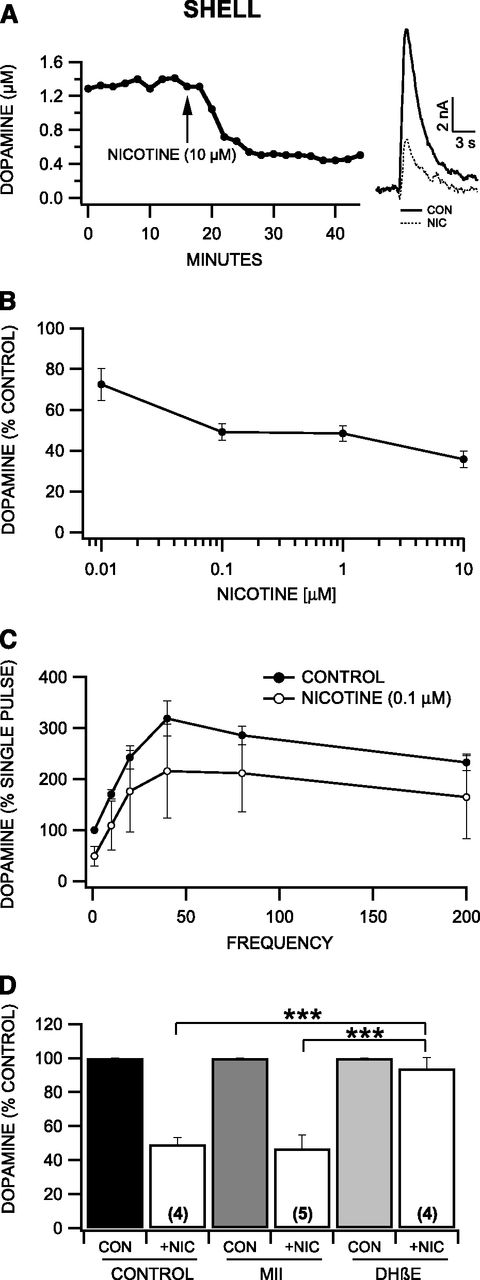 Acute Ethanol Inhibits Dopamine Release in the Nucleus