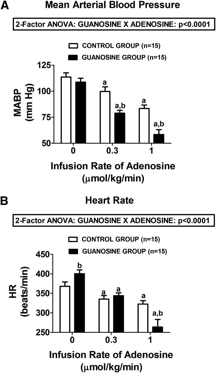 The Guanosine-Adenosine Interaction Exists In Vivo | Journal