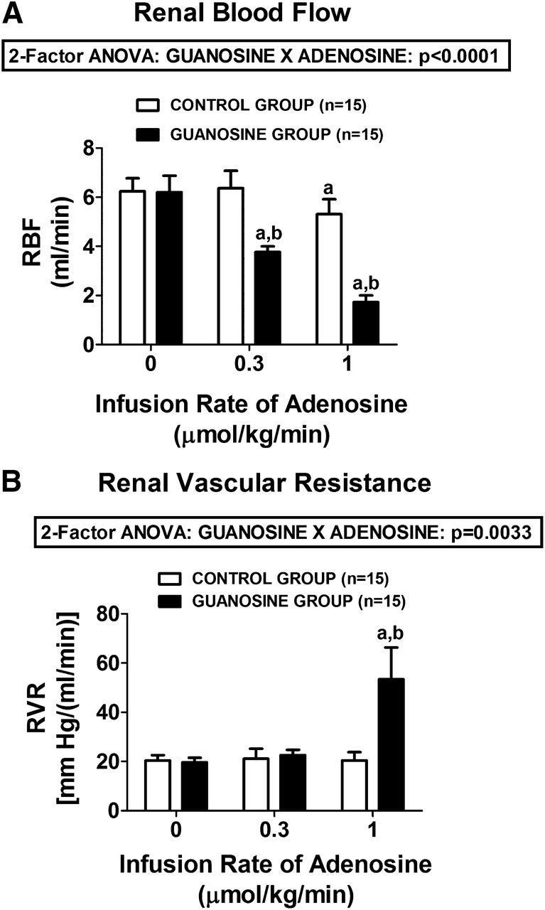 The Guanosine-Adenosine Interaction Exists In Vivo | Journal of