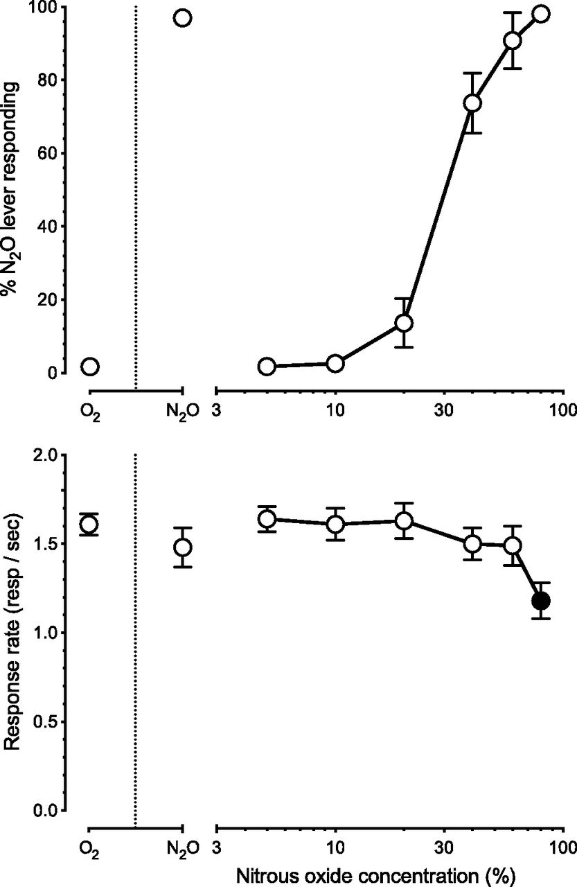 N methyl d aspartate receptor channel blockerlike discriminative download figure pooptronica Gallery
