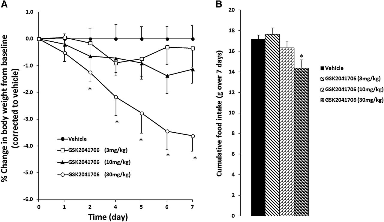 Synergistic Effects of a GPR119 Agonist with Metformin on