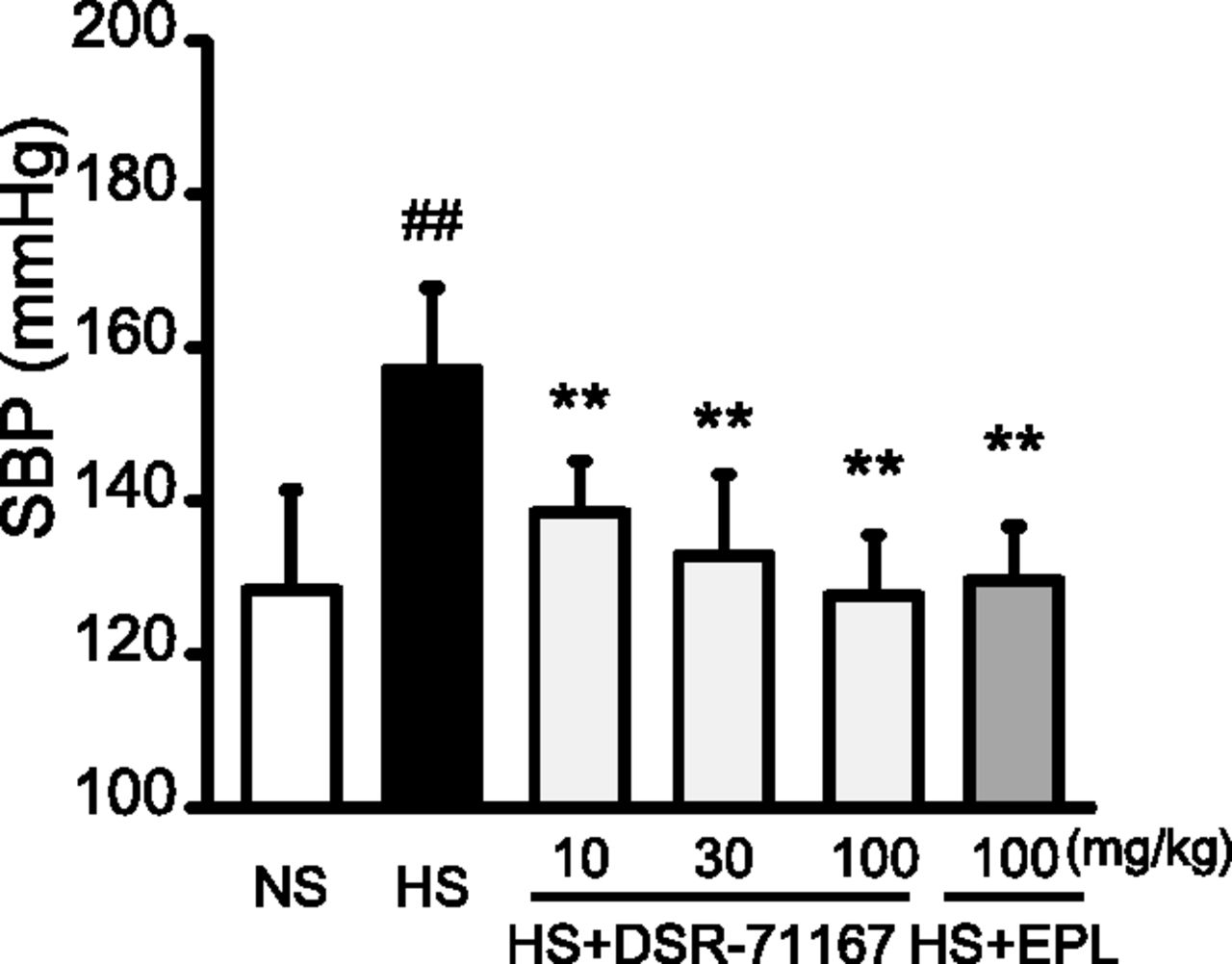 DSR-71167, a Novel Mineralocorticoid Receptor Antagonist with