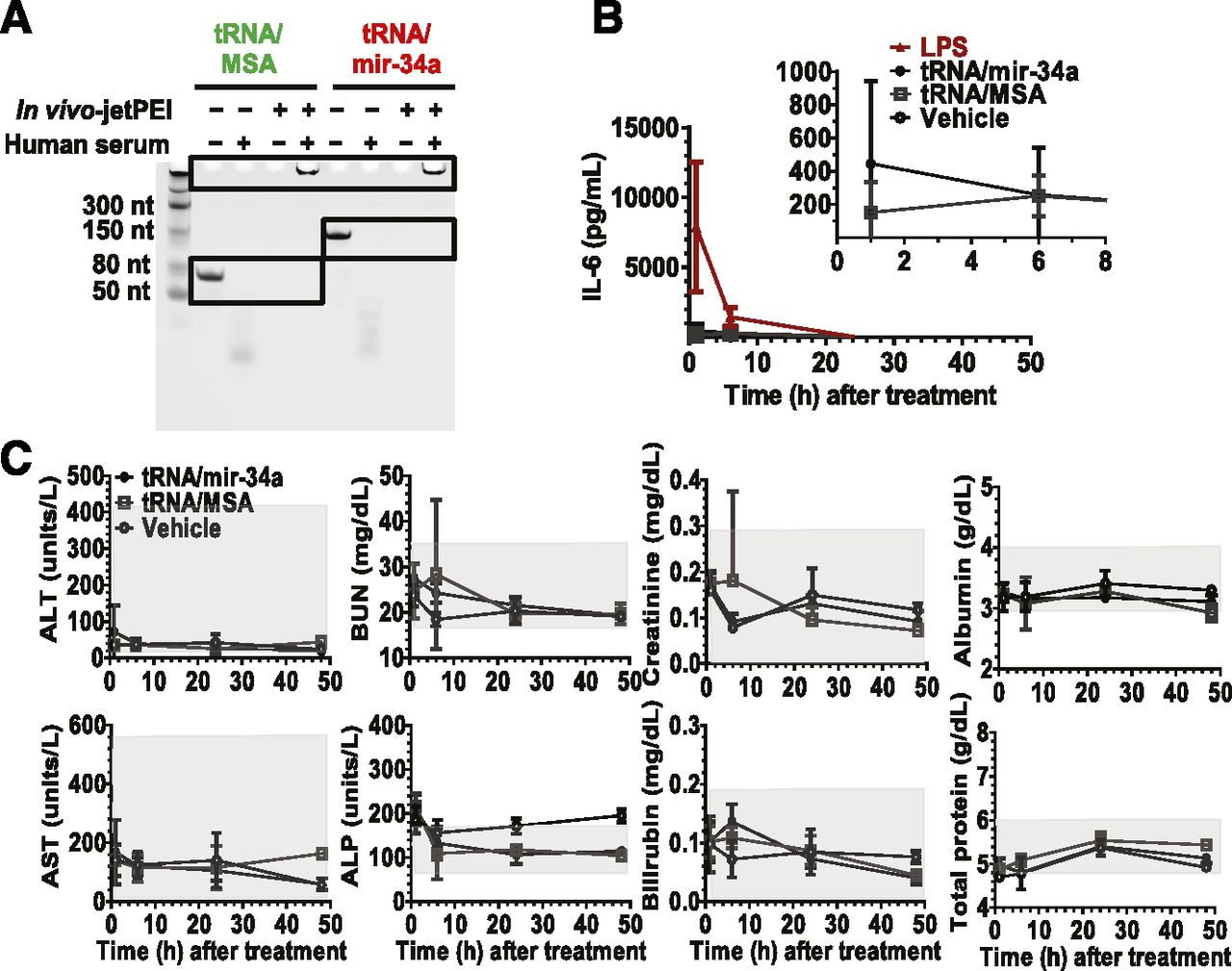Bioengineering Novel Chimeric Microrna 34a For Prodrug Cancer 12 V Wiring Diagram 350 Cc 500 Us Canada Version Download Figure