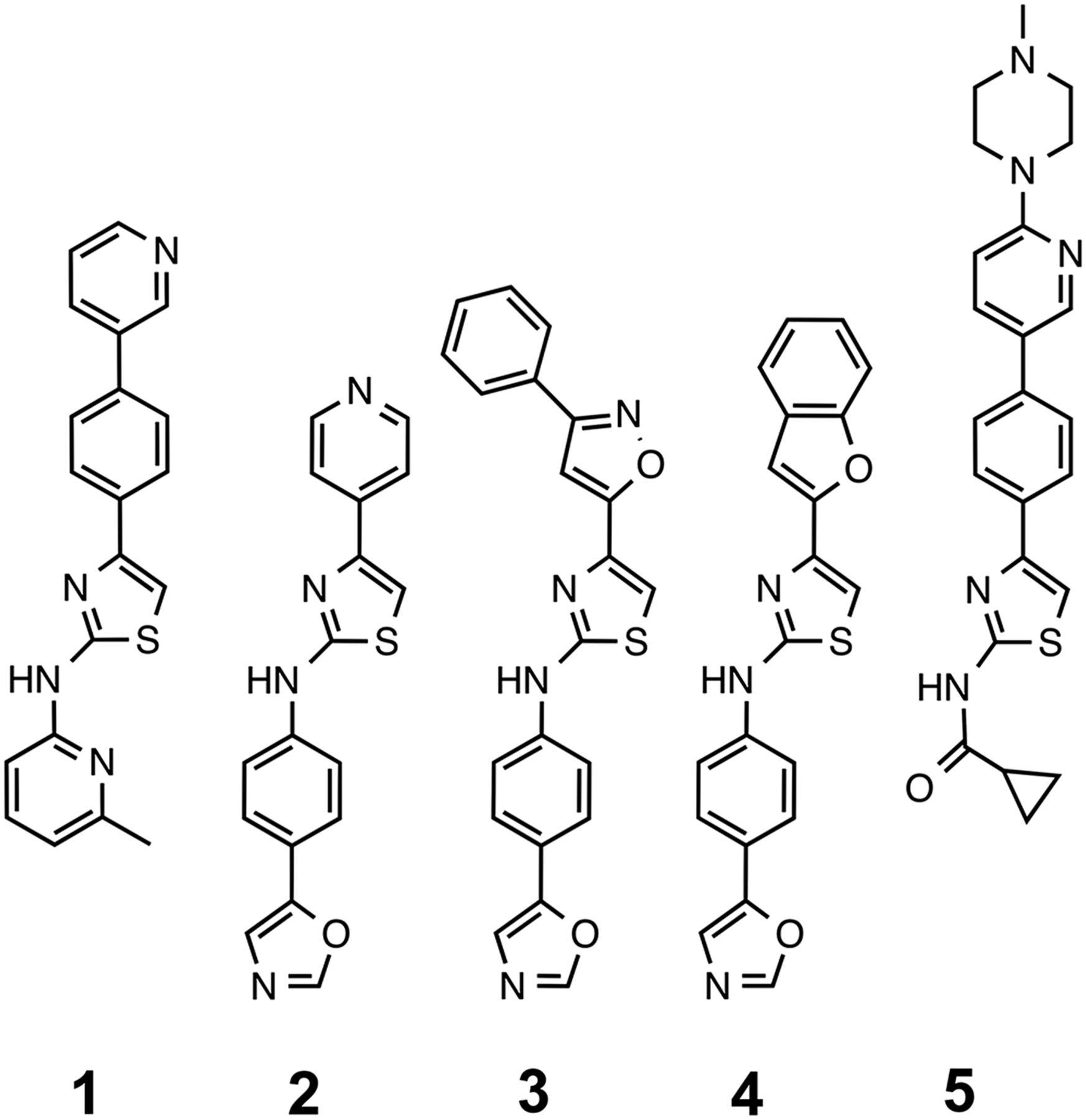 Different 2 Aminothiazole Therapeutics Produce Distinct Patterns Of 10 Opti Art Rings Download Figure
