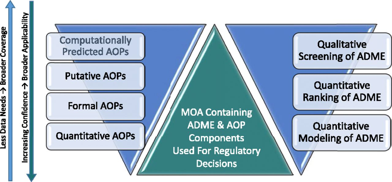 Adverse Outcome Pathways—Organizing Toxicological