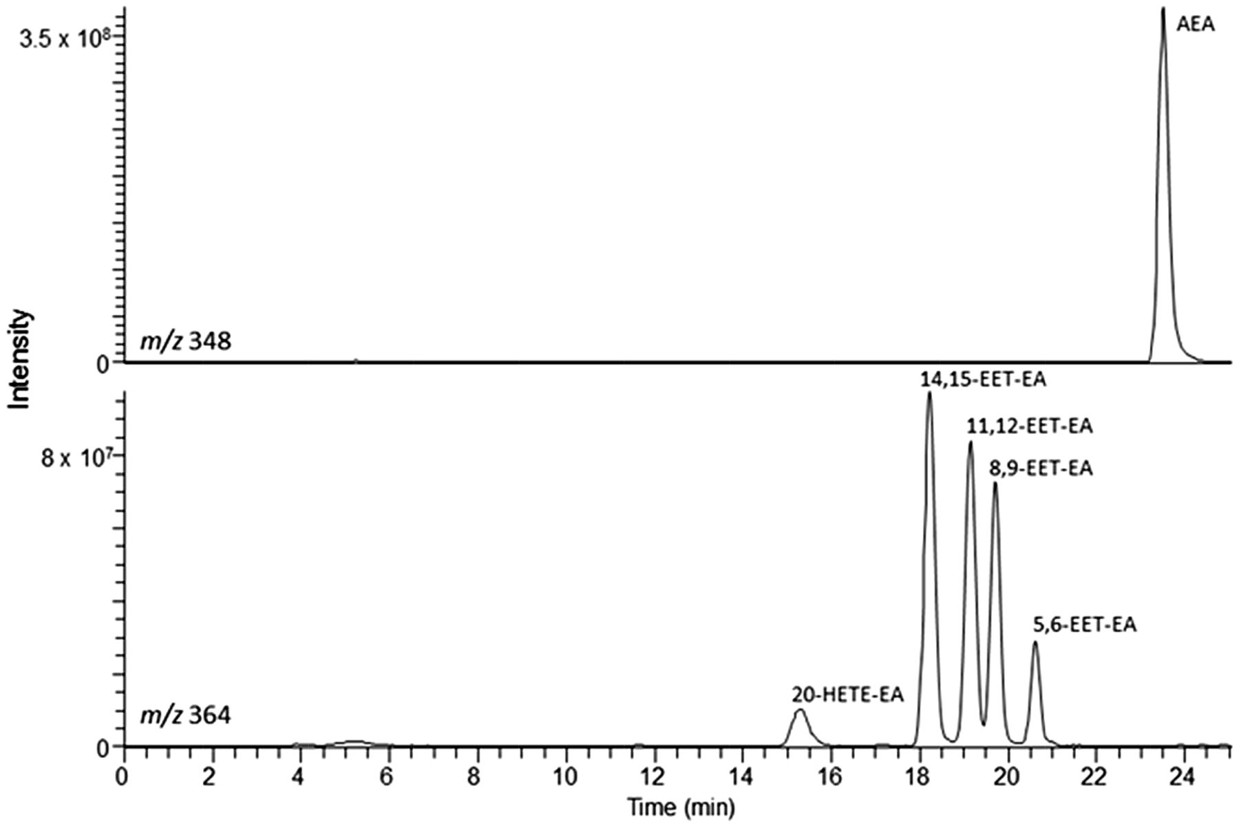 Metabolism of Anandamide by Human Cytochrome P450 2J2 in the ...