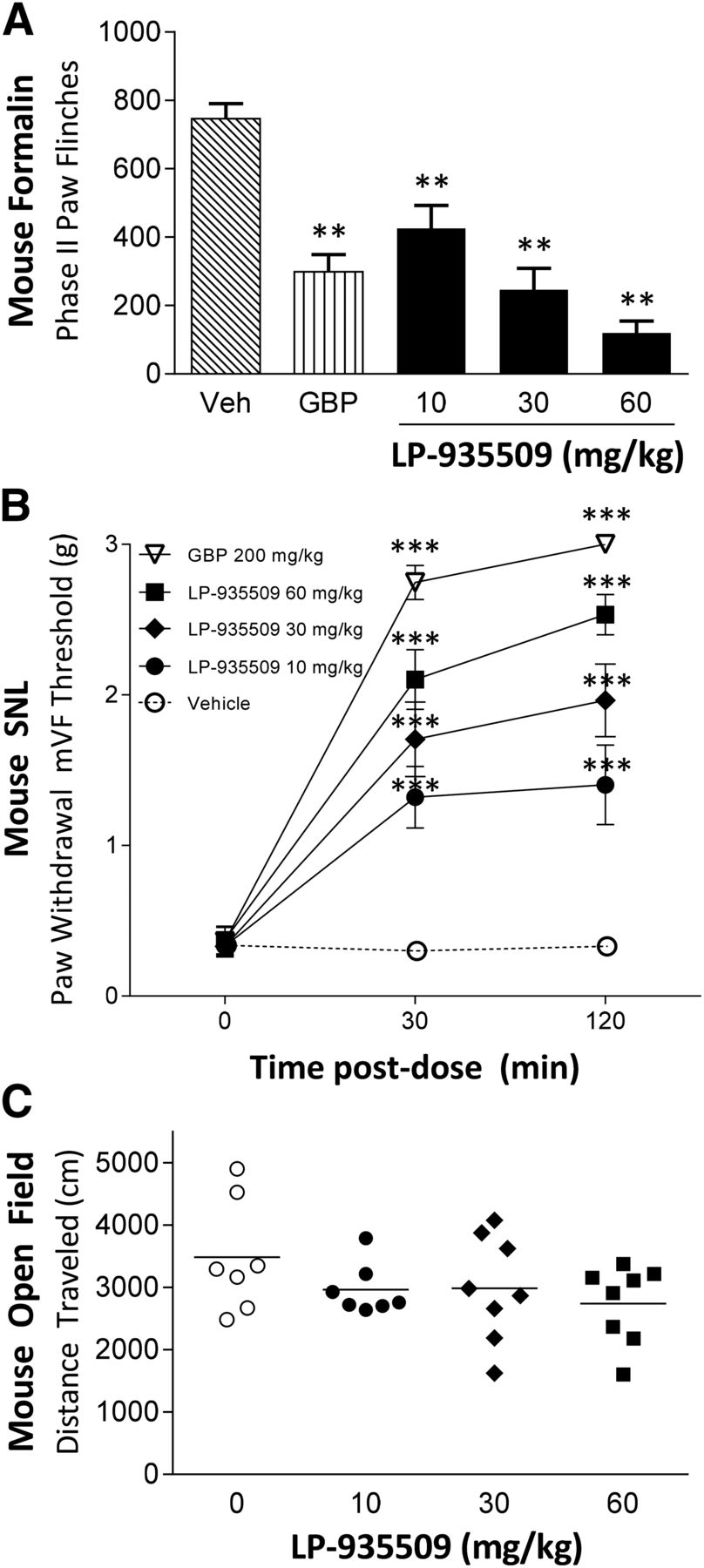 Inhibition of AAK1 Kinase as a Novel Theutic Approach to Treat ...