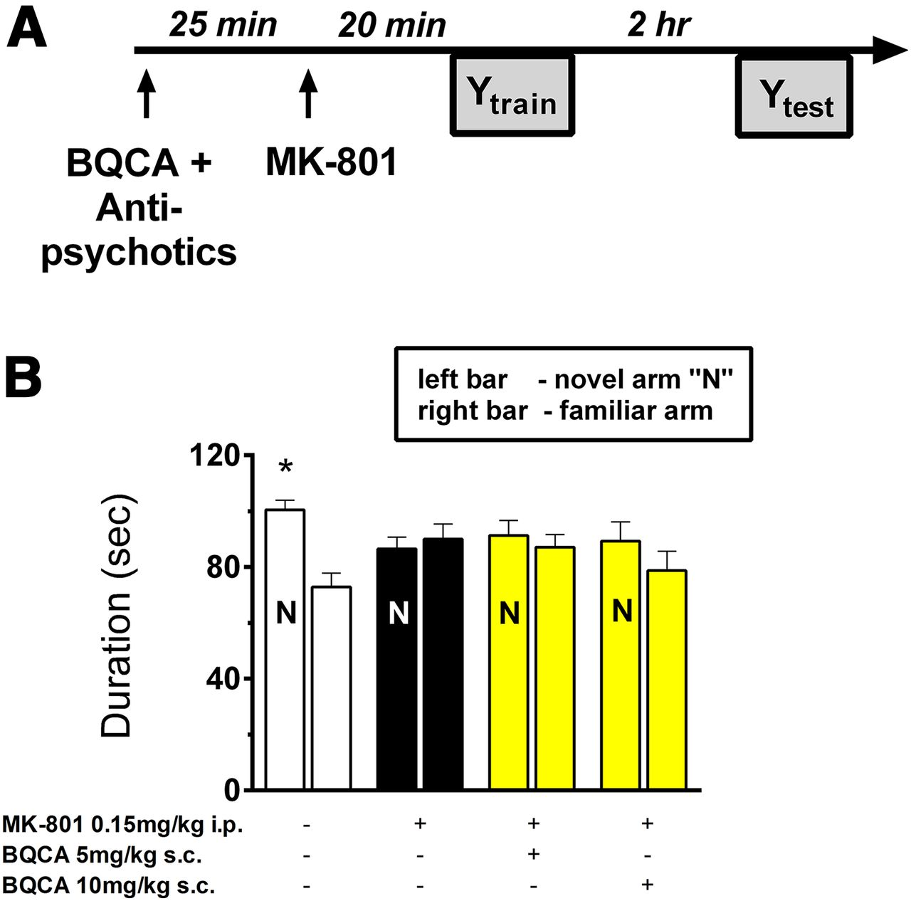 Positive Allosteric Modulation of the Muscarinic M1 Receptor