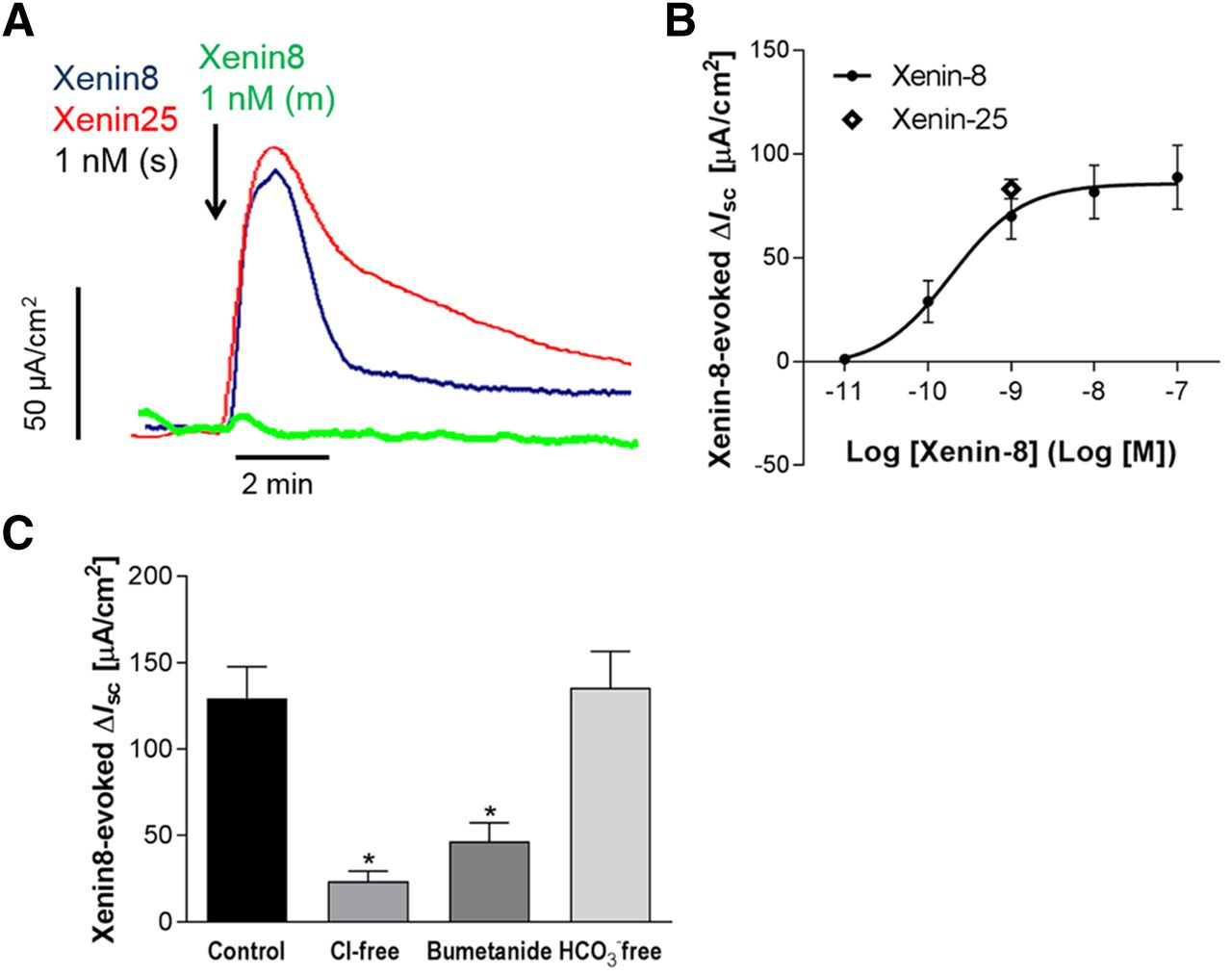 Xenin Augments Duodenal Anion Secretion Via Activation Of Afferent Wiring Diagrams Moreover Metric Pipe Size Chart On Hayward Motor Download Figure