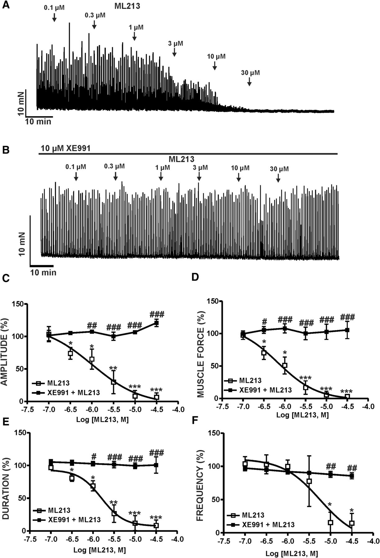 KV7 Channel Pharmacological Activation by the Novel