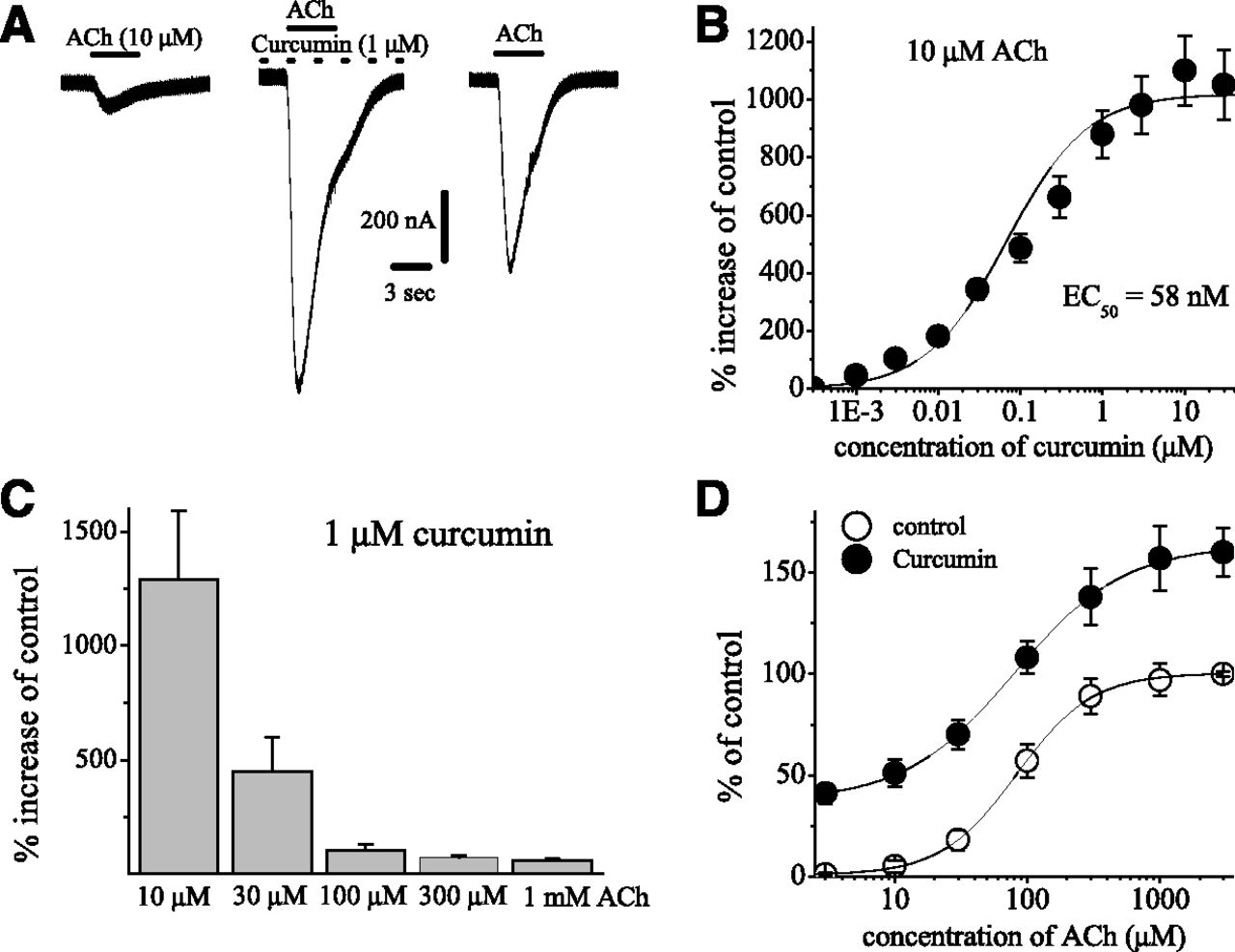 Curcumin Acts as a Positive Allosteric Modulator of α7-Nicotinic