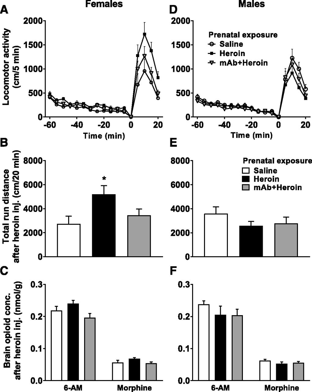 A Monoclonal Antibody against 6-Acetylmorphine Protects Female Mice