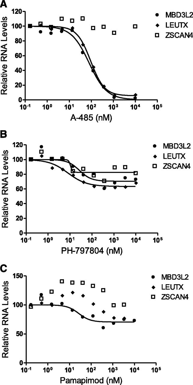 Clinically Advanced p38 Inhibitors Suppress DUX4 Expression