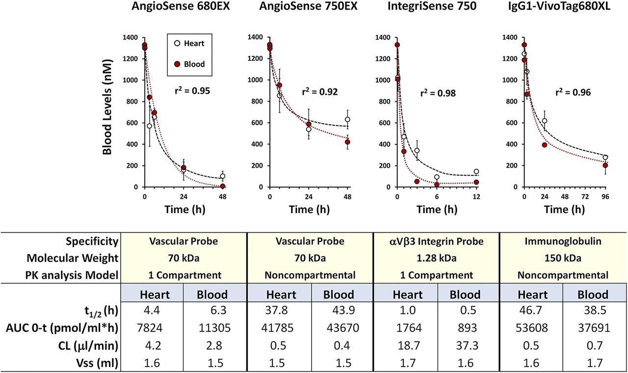Blood Pharmacokinetics Imaging by Noninvasive Heart