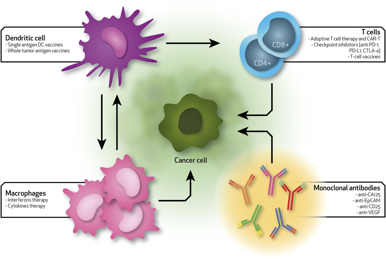 Nanotechnology And Immunotherapy In Ovarian Cancer Tracing New Landscapes Journal Of Pharmacology And Experimental Therapeutics