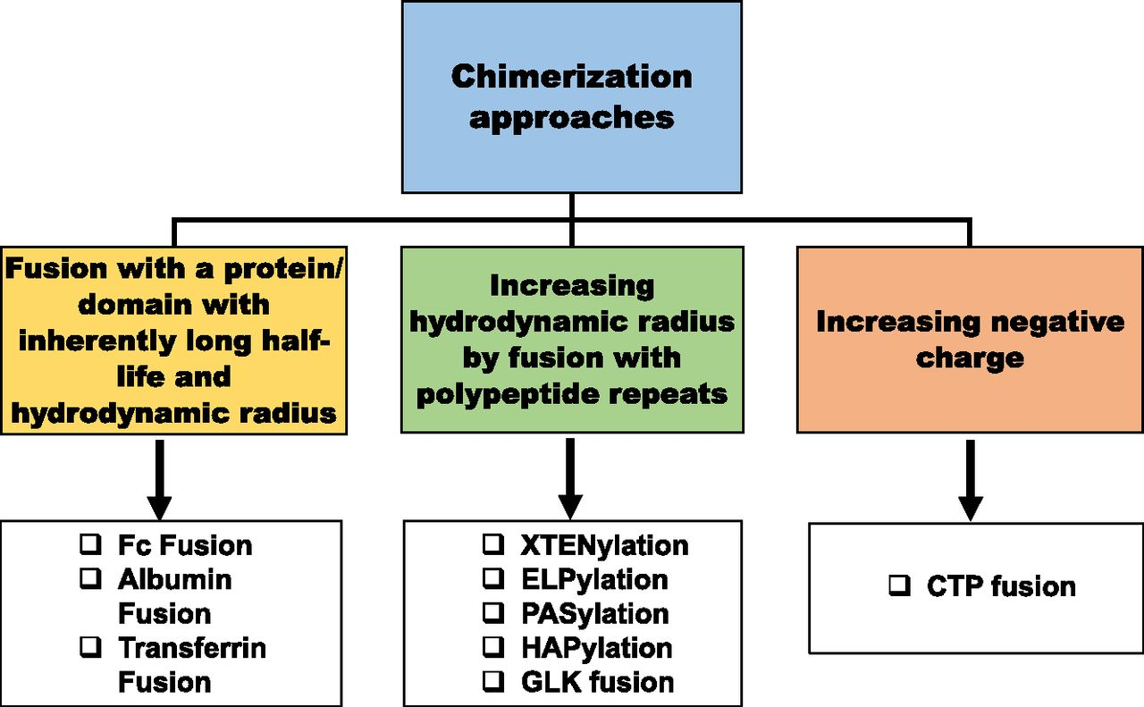 Protein Chimerization: A New Frontier for Engineering
