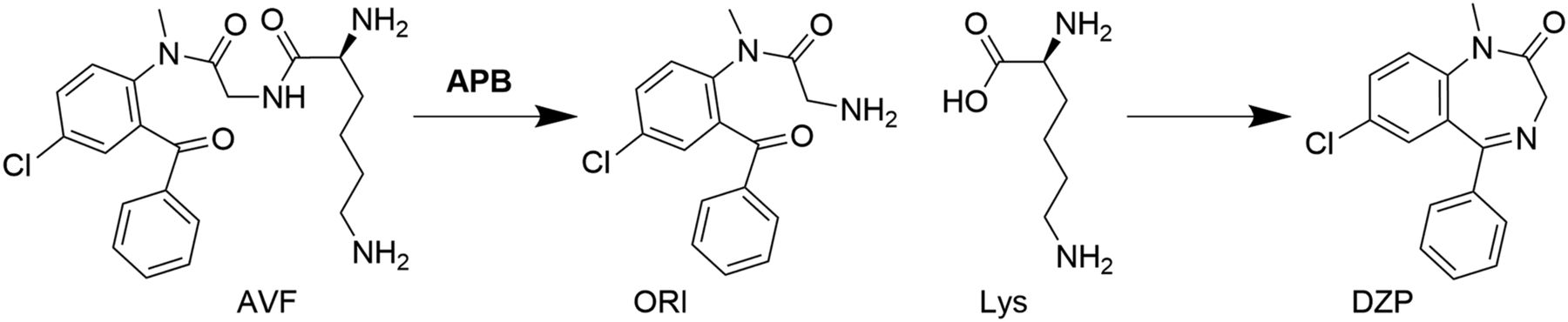 Intranasal Coadministration of a Diazepam Prodrug with a