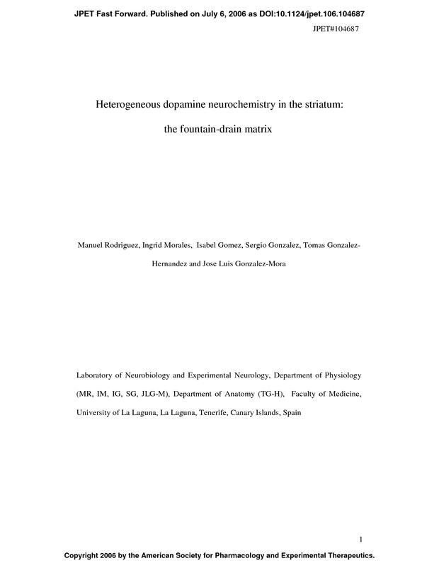 Heterogeneous dopamine neurochemistry in the striatum: the fountain
